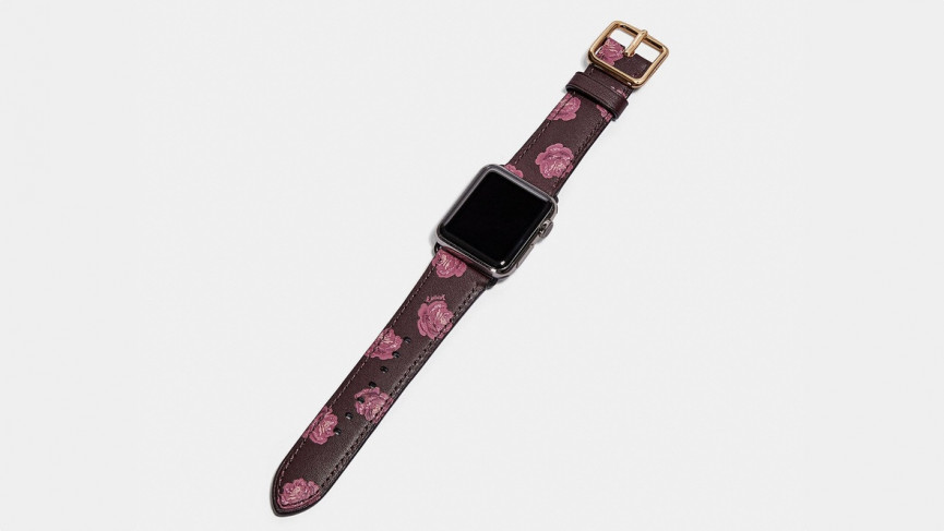 Best Apple Watch bands coach leather flowers band